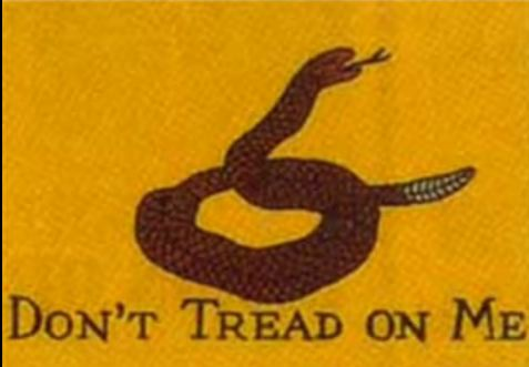 Don't Tread on Me Happy Birthday America